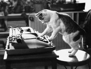 Cat Writer